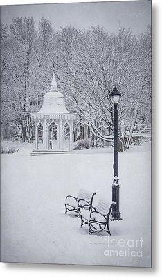 Love Through The Winter Metal Print by Evelina Kremsdorf