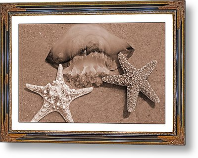 Love Triangle  Metal Print by Betsy Knapp