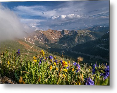 Loveland Pass Summer Metal Print by Michael J Bauer