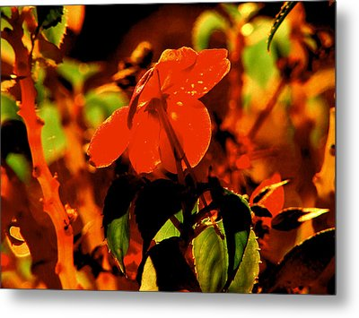 Lovely A Flower Metal Print by Gayle Price Thomas