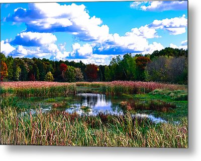 Lovely Day Metal Print by Michelle and John Ressler