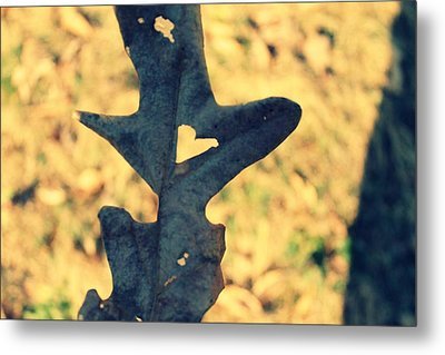 Metal Print featuring the photograph Lovely Leaf by Candice Trimble