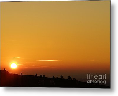 Lovers N Sunsets Metal Print