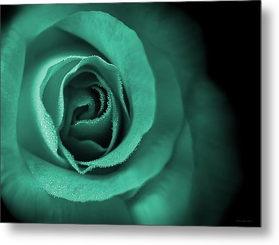 Love's Eternal Teal Green Rose Metal Print by Jennie Marie Schell