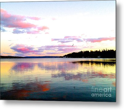 Metal Print featuring the photograph Love's Sky by Margie Amberge