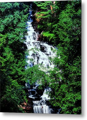Low Angle View Of The Wolf Creek Falls Metal Print