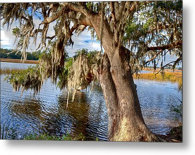 Low Country Creek Metal Print