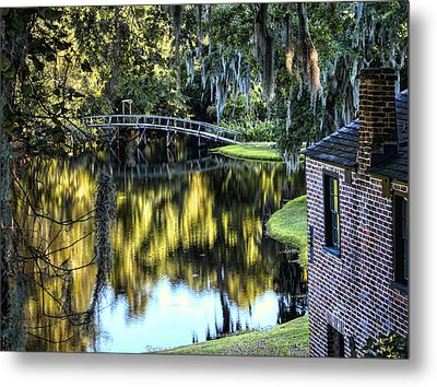 Metal Print featuring the photograph Low Country Impressions by Jim Hill