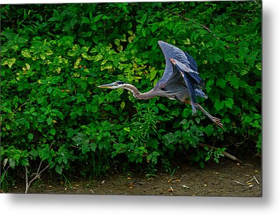 Low Pass Metal Print