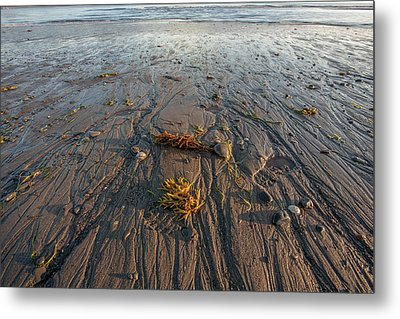 Low Tide At Sunrise Metal Print