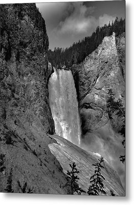 Lower Falls In Yellowstone In Black And White Metal Print by Dan Sproul