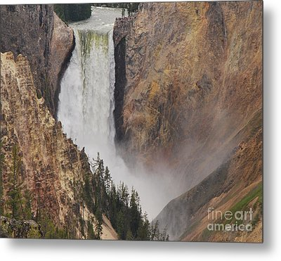 Metal Print featuring the photograph Lower Falls - Yellowstone by Mary Carol Story