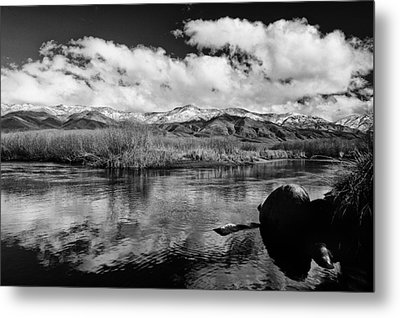 Lower Owens River Metal Print by Cat Connor