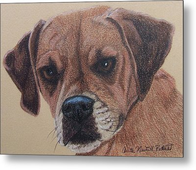 Lucy-puggle Commission Metal Print
