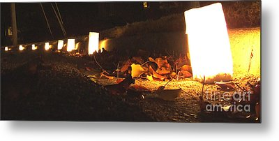 Metal Print featuring the photograph Luminaries by Andrea Anderegg