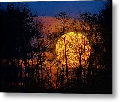 Luminescence Metal Print by Bill Pevlor