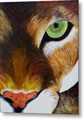 Lunch Metal Print by Donna Blackhall