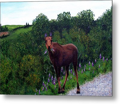 Metal Print featuring the painting Lupine Loving Moose by Barbara Griffin
