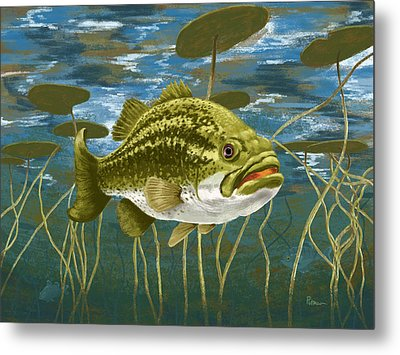 Lurking Lunker Metal Print by Kevin Putman