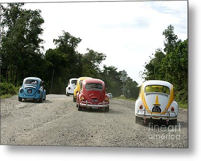 Luve Bugs  Metal Print by Gary Bridger
