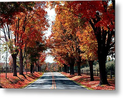 Metal Print featuring the photograph Lynn Run 4 Pa by Denise Moore