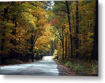 Metal Print featuring the photograph Lynn Run Pa by Denise Moore