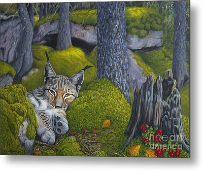 Lynx In The Sun Metal Print