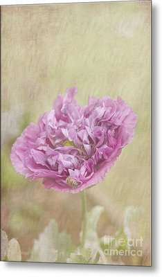 Mabel Metal Print by Elaine Teague