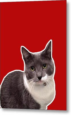 Mac Attack-custom Order Metal Print by Linda Woods
