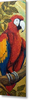 Macaw I Metal Print by Paris Wyatt Llanso