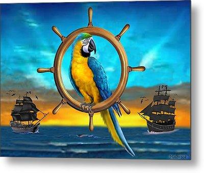 Macaw Pirate Parrot Metal Print by Glenn Holbrook