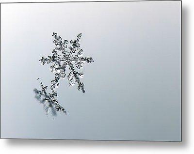 Macro Snowflake Metal Print
