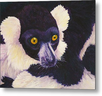 Madagascan Magic Metal Print