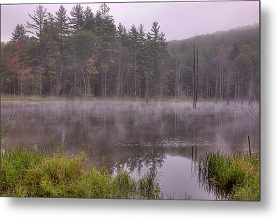 Metal Print featuring the photograph Madame Sherri's Pond IIi by Tom Singleton