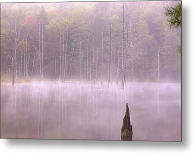 Metal Print featuring the  Madame Sherri's Pond by Tom Singleton