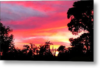 Metal Print featuring the photograph Magenta Sunset by DigiArt Diaries by Vicky B Fuller