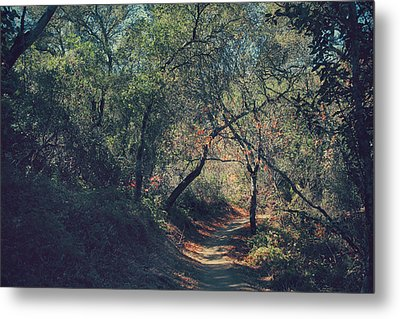 Magic Awaits Us Metal Print by Laurie Search
