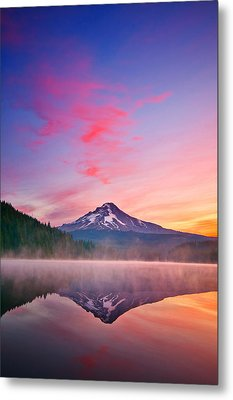 Magic Morning Metal Print by Darren  White