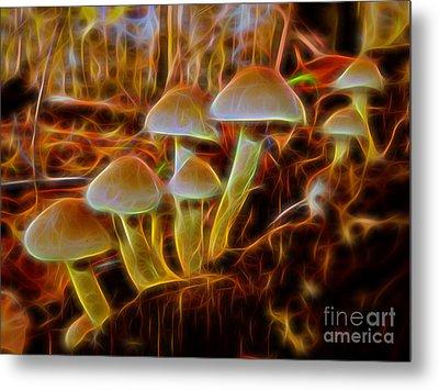 Magic Mushroom-3 Metal Print