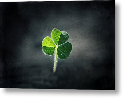 Magical Clover Metal Print by Melanie Lankford Photography