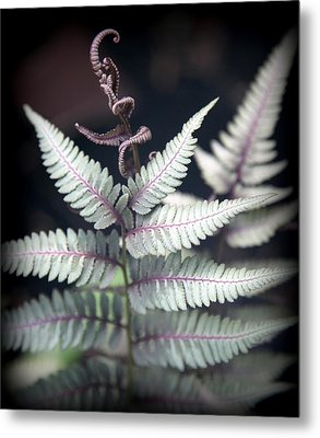 Magical Forest 2 Metal Print by Karen Wiles