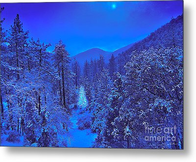 Magical Forest Metal Print by Gem S Visionary