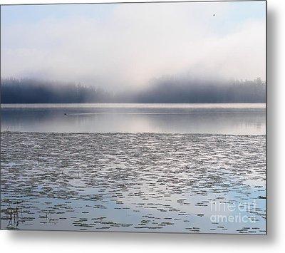 Magical Morning Of Mist Metal Print