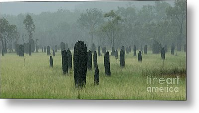 Magnetic Termite Mounds Metal Print