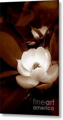 New Orleans Magnolia Beauty Metal Print