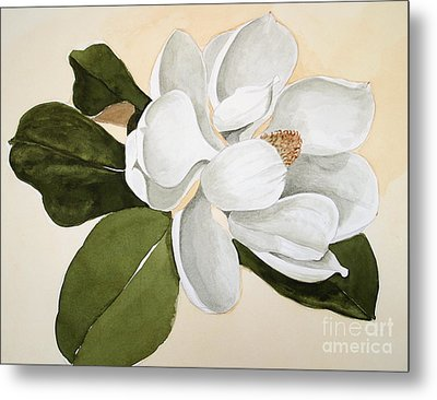 Metal Print featuring the painting Magnolia Bloom by Nancy Kane Chapman