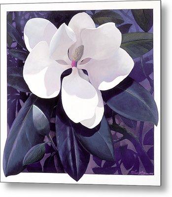 Magnolia Metal Print by Blue Sky