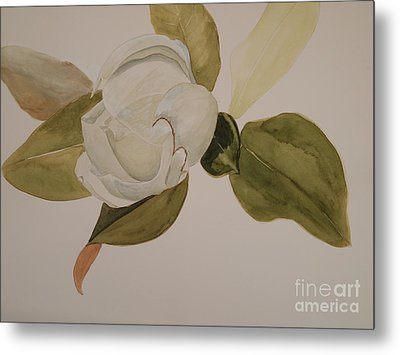 Metal Print featuring the painting Magnolia California by Nancy Kane Chapman