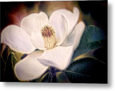 Metal Print featuring the photograph Magnolia Dream by Joetta West
