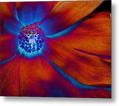 Metal Print featuring the photograph Magnolia Electric by Susan Maxwell Schmidt